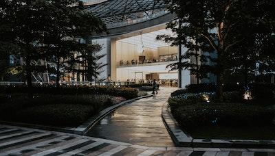 큐레이터의 말: 시어스의 몰락, 백화점의 미래