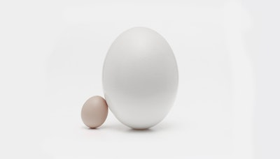 [문화] '달걀'은 어떻게 카일리 제너를 이겼나