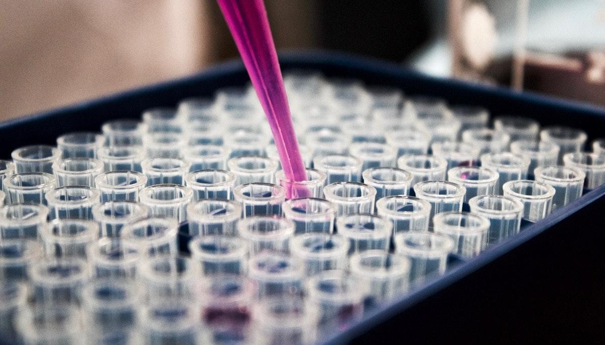가치 테스트 및 사업 유효성 테스트