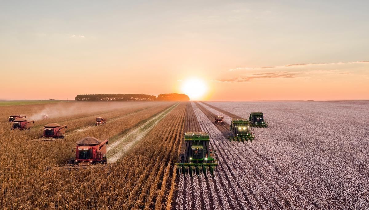 '식품업계의 넷플릭스'와 '농업계의 구글'
