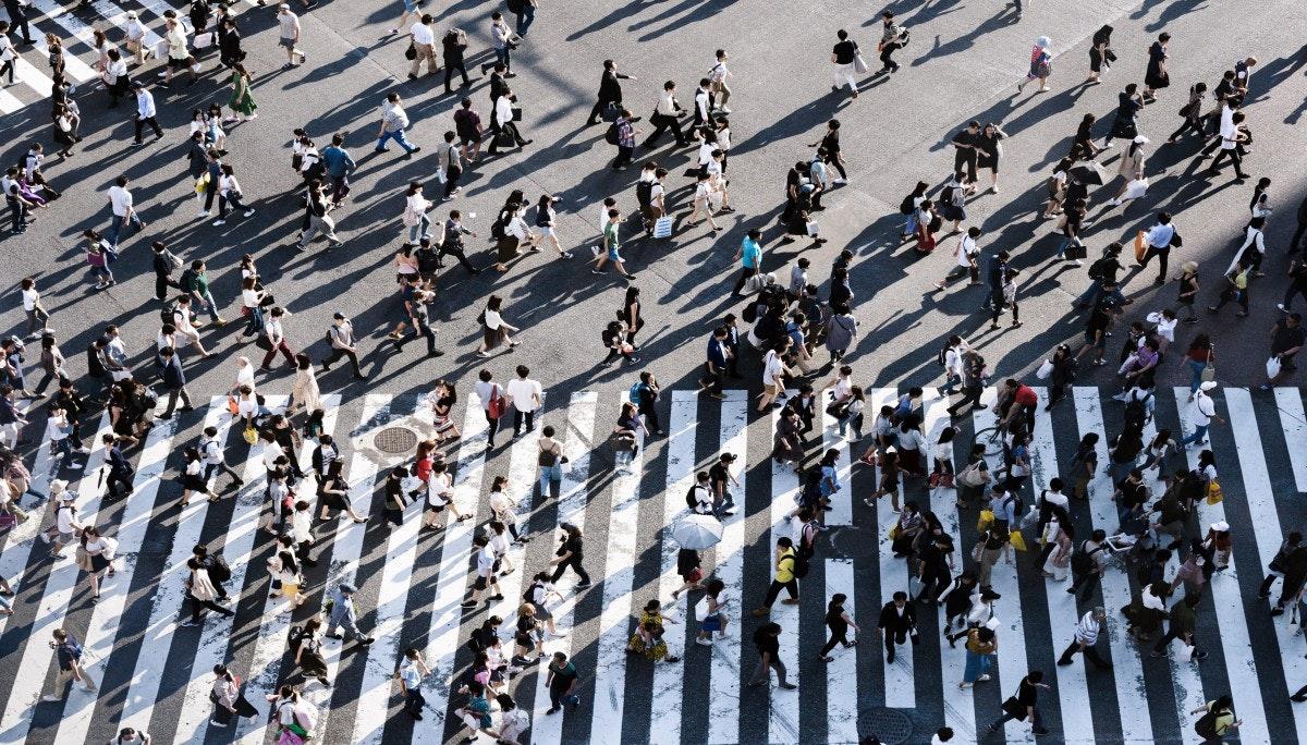 경제학 프리즘으로 세상 바라보기(2): 사회의 경제학