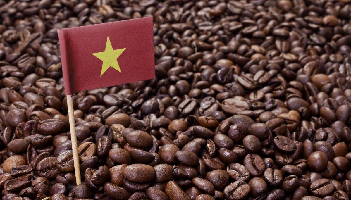 식음료: 베트남 카페 프랜차이즈의 브랜드 전략